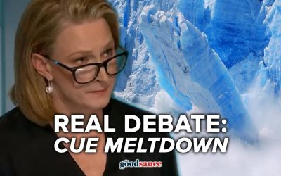 ABC finally questions lockdowns and leftists quickly go into meltdown