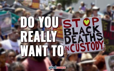 Do you really want to stop black deaths in custody?